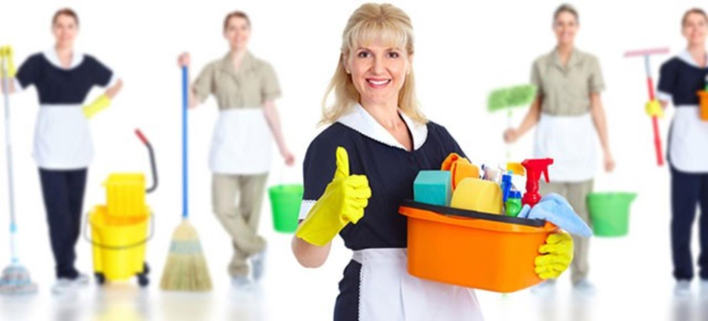 Image result for House Cleaners